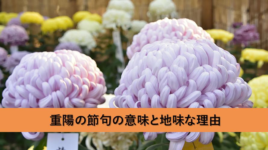 重陽の節句の意味とは?なぜやるの?なぜ日本では地味なの?