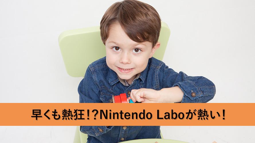 熱狂している人もいる!?Nintendo Laboがヤバイ!