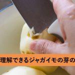 一瞬で分かるジャガイモの芽の取り方と危険性について