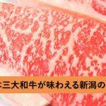 新潟から出たくない肉好きの方必見!日本三大和牛が味わえる新潟の名店